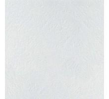 Потолочная плита Ретэйл 1200x600x14мм